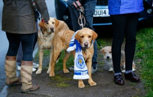 Leicester City fans with their dogs gather outside Jamie Vardy's home.