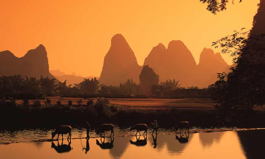 Karst hills at Guilin, southern China with animals by the water in golden light