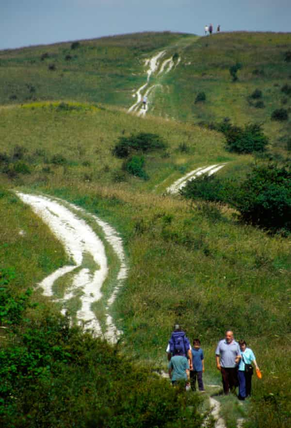 Chalk tracks on Ivinghoe Beacon in Buckinghamshire.