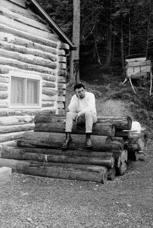 ali on logs