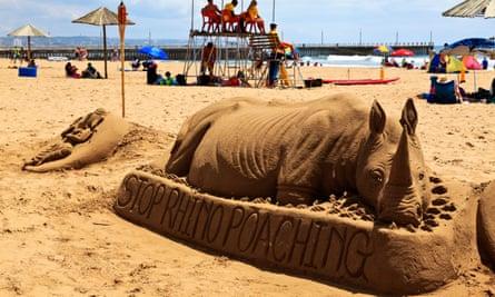 Lucas's rhino, Durban.