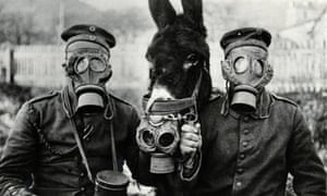 Soldiers and donkey in gas masks during first world war.