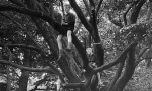Children playing in a tree, circa 1935