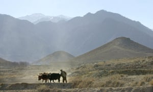 An Afghan farmer works on his field near the mountain region of Tora Bora. Isis has captured territory around the area, officials say.