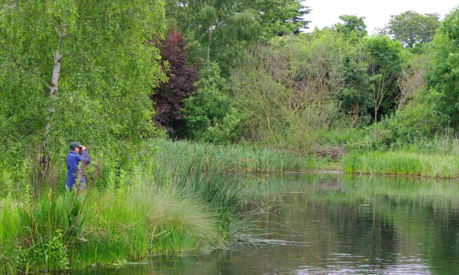 The WWT London Wetland Centre