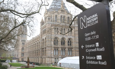 The exterior of the Natural History Museum in London.