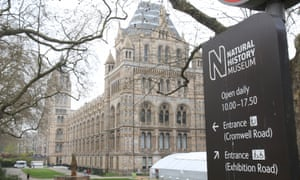 natural history museum defends hosting saudi embassy event culture