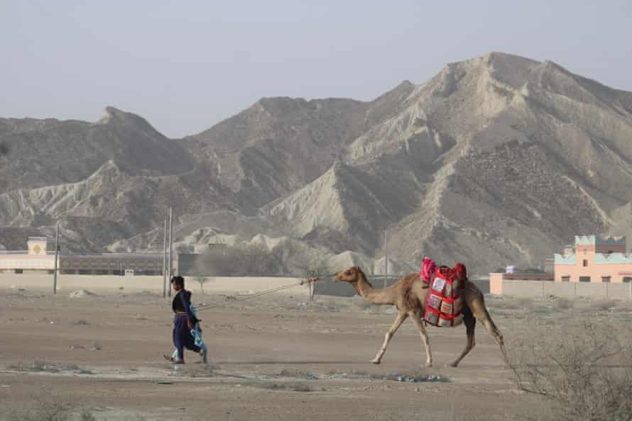 Camel rider Abdul Qadeer leads Chirag, laden with books, to the town of Abdul Rahim Bazar, in Gwadar.