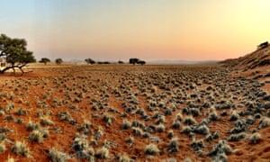 Namibia's Skeleton Coast.