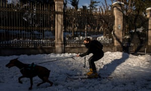 A woman on skis is pulled by her dog on a snowy street a day after the heaviest snowfall in decades in Madrid