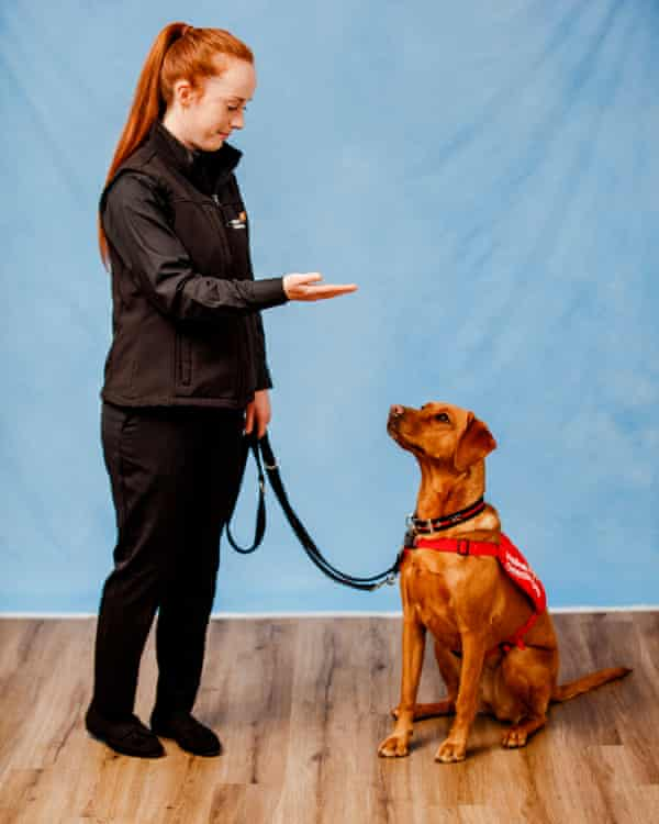 Trainer Jess with Belle, a two-year-old fox red labrador.