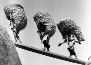 Hay Carriers, El Badrashin Village - Giza, 1957