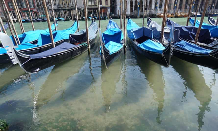 Clean waters in Venice's Grand Canal, March 2020.