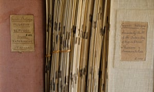 The library of notebooks at Inera's headquarters in Yangambi, DRC.