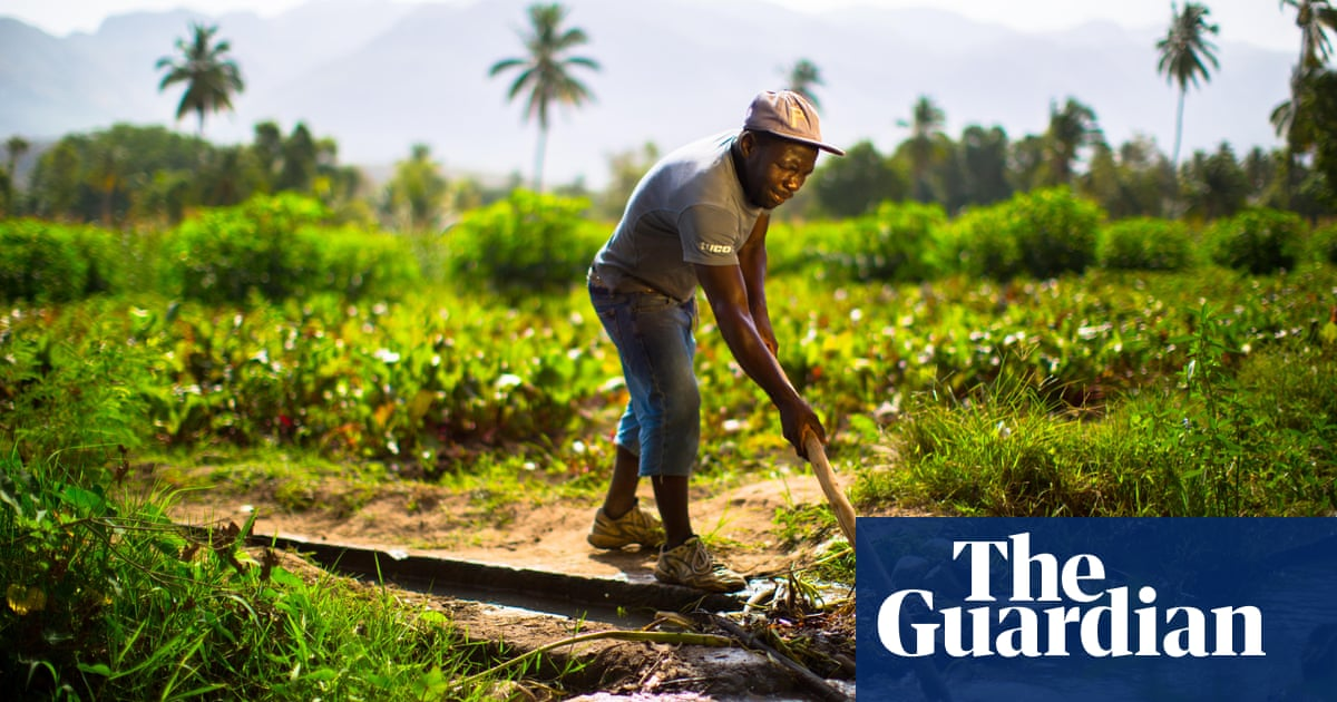 In Haiti, a project to help farmers inspires a sustainable