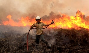 An Indonesian soldier tries to extinguish a forest fire on a peat land at Ogan Komering Ilir in South Sumatra, Indonesia.