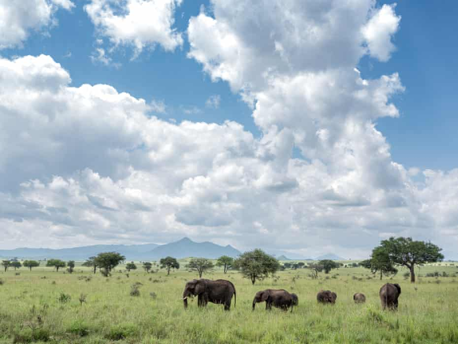 Kidepo national park on the shared border of South Sudan and Uganda.