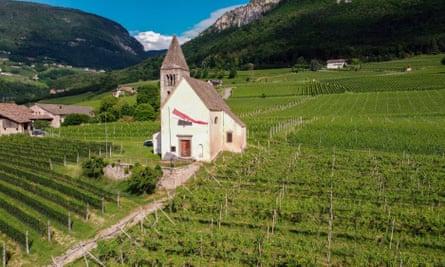 Alpine freshness: Italy's Trentino-Alto-Adige region produces some of the best examples of pinot grigio.