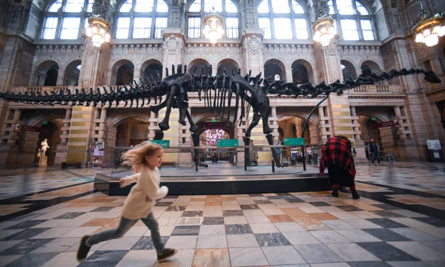 Members of the public view Dippy the dinosaur