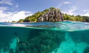 Snorkeling at Raja Ampat, in Indonesian New Guinea.