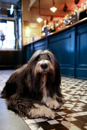 Maxwell at the Crown and Two Chairmen, Soho