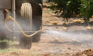 'The Trump administration's recent decision to allow farmers to treat crops with the insecticide chlorpyrifos is a prime example of how children's health is taking a back seat to corporate interests.'