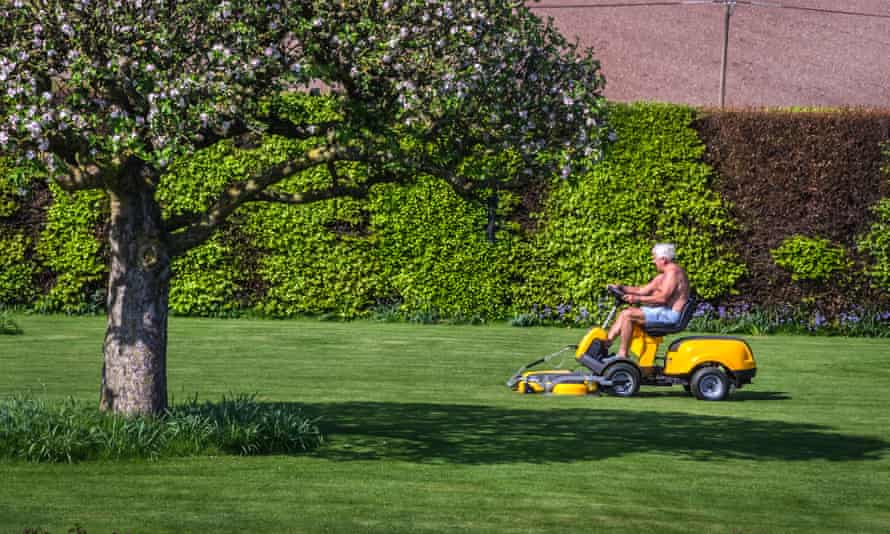 'No one at the cutting edge of gardening still thinks that a green grass lawn is the grail - especially if you live in an area like Arizona or Utah where there's barely enough water to go around.'
