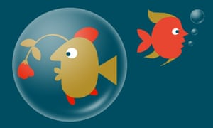 Image of two fish swimming away from each other