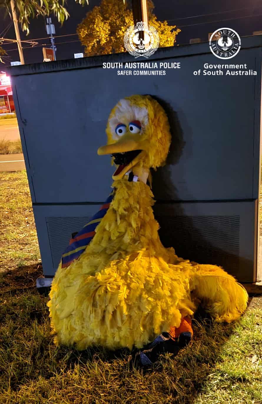 The stolen Big Bird suit