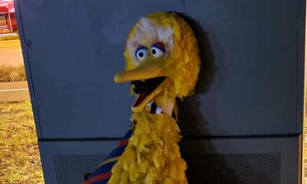 The stolen Big Bird suit after its return.