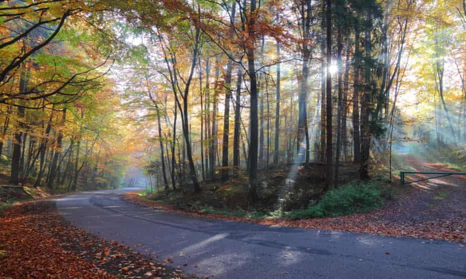 Poland, Ojcow national park in autumn.