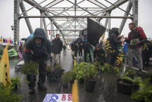 Protesters occupying Burrard Bridge and covering it with plants, blocking traffic out of downtown Vancouver