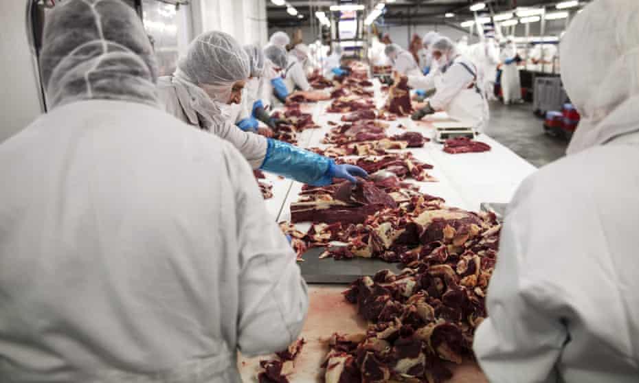 A slaughterhouse in Romania