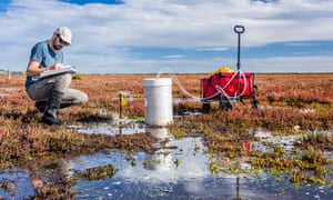 Scientist measuring greenhouse gas emissions at a wetland using a portable gas analyser to understand the role of tidal marshs in carbon sequestration