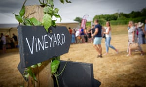 FizzFest offers tastings of 16 still and sparkling wines from eight Hampshire vineyards