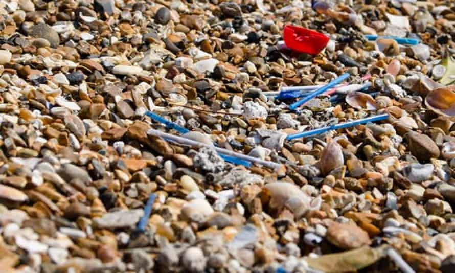 Cotton buds littering the beach