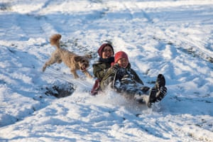A dog chases sledgers down the hill in Greenwich park, London.