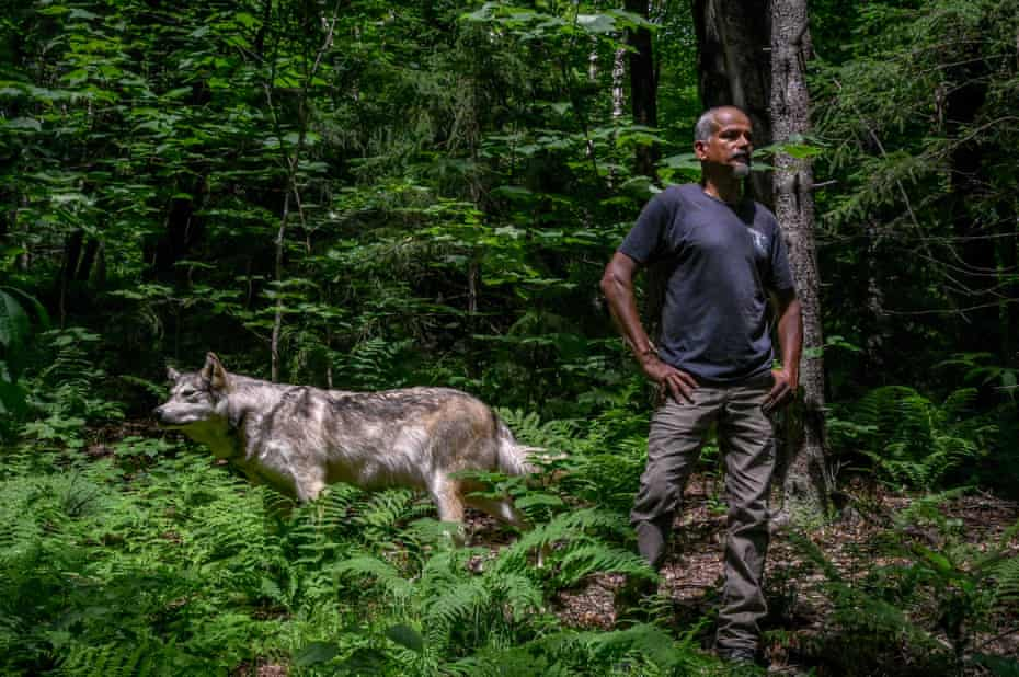 Coronado, founder of Wolf Patrol, poses for a portrait with a taxidermy wolf he uses to lure poachers and catch out-of-season wolf hunting.