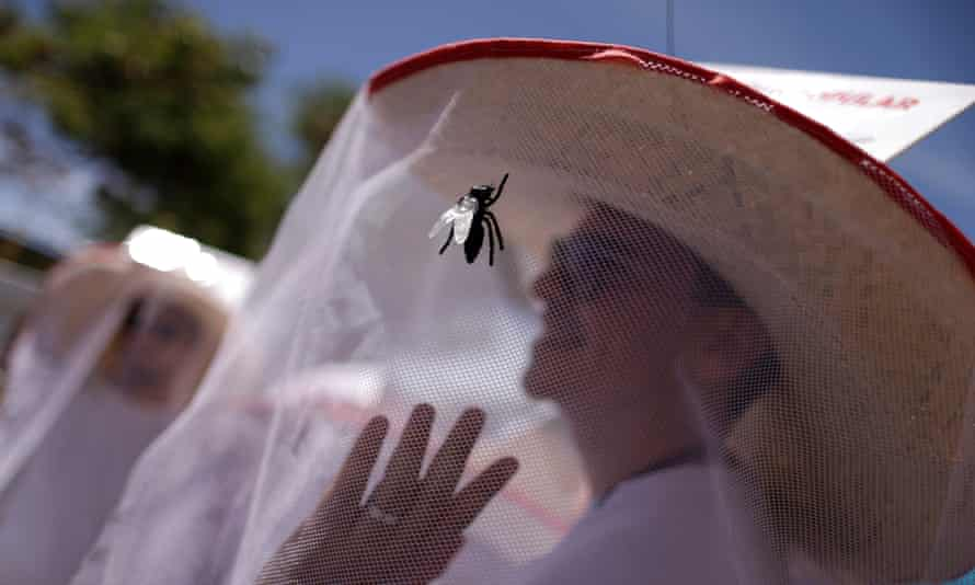 Carnival mosquito net hat