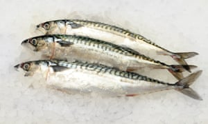 Fatty fish such as mackerel are naturally rich in vitamin D.