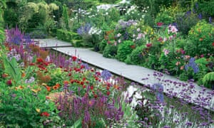 Formal pool with Verbena bonariensis, purple loosestrife, dahlia 'Jessica Willows' and rose 'Florence Mary Morse'.