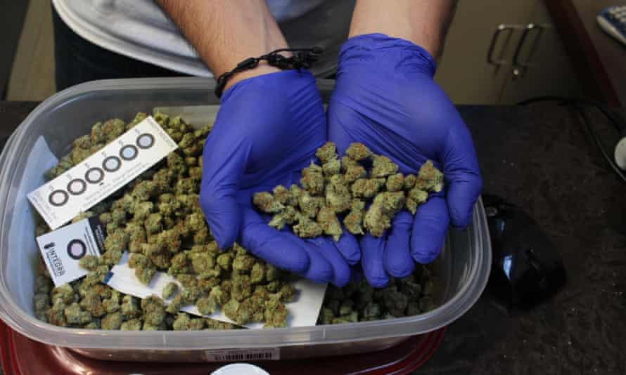 A worker at a medical marijuana dispensary in the Boston suburb of Brookline shows off a handful of cannabis.