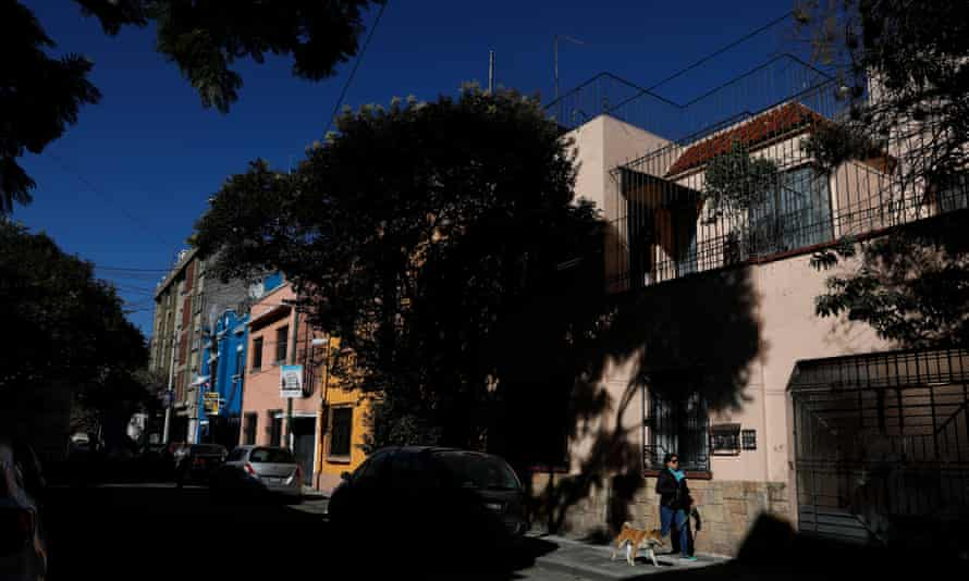 On December 20, 2018, a woman dogged his dog on Tepeji Street in the Roma Sur neighborhood of Mexico City. His director Alfonso Cuarón lived in a residence in the 1970s during his childhood.