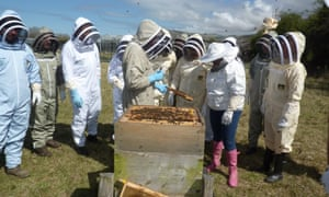 Visitors, stood by a hive, learn about beekeeping on one of the centre's regular courses. National Beekeeping Centre, Conwy, Wales.