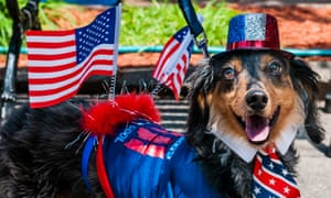 Louie, an eight year old long haired dachshund and cancer survivor, enters the fancy dress competition