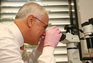 Australian Prime Minister Malcolm Turnbull tours research labs, viewing frozen cancer cells and live cancer cells under a microscope, during his visit to the Lowy Cancer Research Centre at the University of New South Wales in Randwick, Sydney, Tuesday, May, 31, 2016.