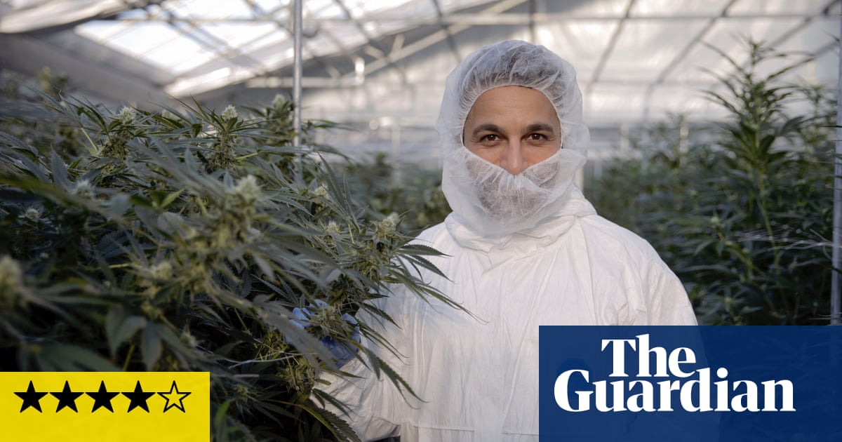 post-image-Cannabis: Miracle Medicine or Dangerous Drug? review – weeding out the truth