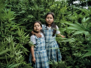 Astri Gisela Yunda Lopez and Feryi Geraldin Yunda Lopez stand in a cannabis field that belongs to their father. Cultivating marijuana risks bringing armed conflict but, as their father Jesus Antonio Yunda explains, without the income from these illegal crops he is unable to pay for the girls' school uniforms and to put food on the table
