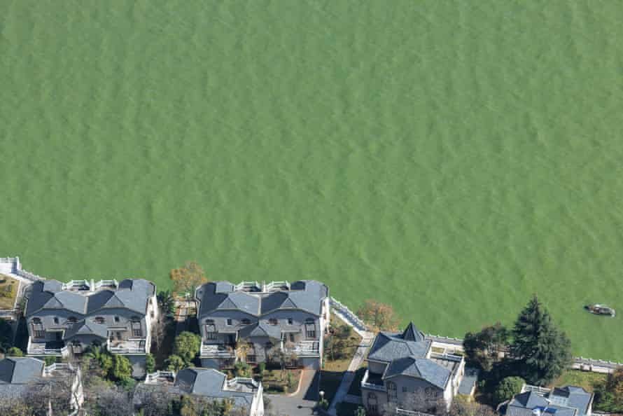 Houses next to polluted Dianchi Lake