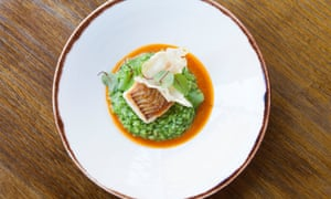 Green herb risotto and brill on a round white plate.
